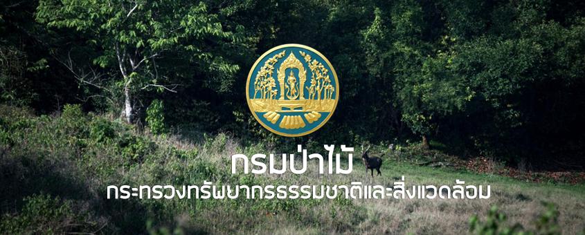กรมป่าไม้ ประกาศรับสมัคร 2561
